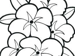 Jasmine Flower Colouring Pages Small Coloring At Free Printable 2