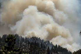 Dixie fire becomes largest in ...