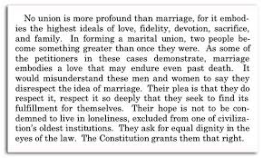 The constitution gay marriage