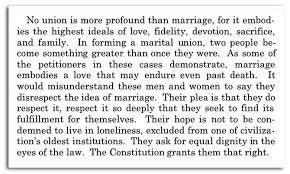 The gay marriage amendment