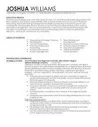Internal Audit Resume Format Auditor Curriculum Vitae Sample Bank