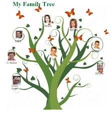 photo family tree template free family tree template jpg 731 x 746 free family tree template