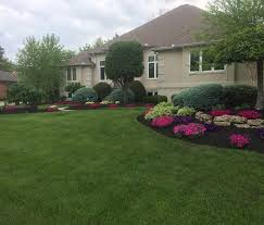 Image of: Nice Evergreen Landscaping