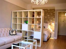 Incredible Living Room Home Design Room Dividers At Ikea Divider Bookshelf  Ideas For Plus Cabinet For
