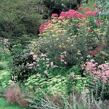 Small Picture 20 Garden Border Designs Garden borders Gardens and Lawn