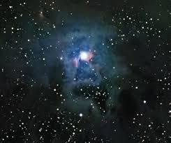 NGC 7023: La Nebulosa Iris  