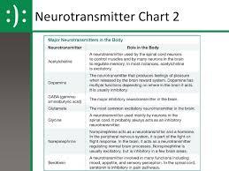 Neurotransmitter Chart Unit 2 Biological Psychology Ppt Download