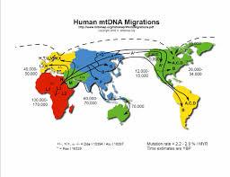 Migration Patterns Definition