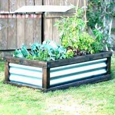 metal raised garden beds metal raised garden bed corrugated beds full image for c coast g metal raised garden beds
