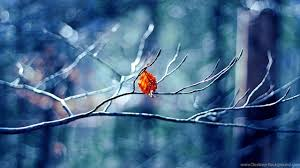 winter mac backgrounds winter wallpapers page 3 4kwallpaper org