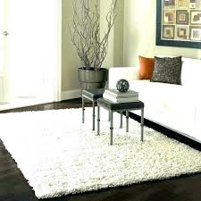 types of area rugs most popular type traditional d