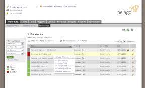 Milestone Project Management Project Milestone Tracker Intervals