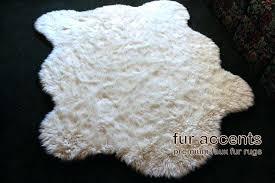 polar bear skin rug polar bear skin rug