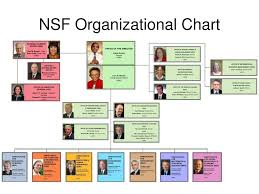 Nsf Org Chart Ppt International Programs At The National Science