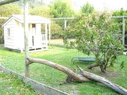 outside cat enclosures run enclosure a outdoor for kits uk pet gazebo e