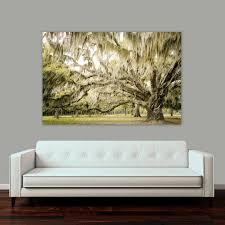 live oak wall art