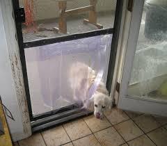 best of diy dog doors with easy inexpensive doggy door in a screen door 6 steps