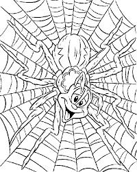 De Spin Die Het Druk Had Juf Eline Lesideeën Basisonderwijs