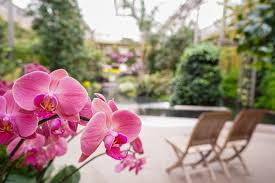 It would probably take all day to see everything in this garden. Make This Valentine S Day One To Longwood Gardens Facebook