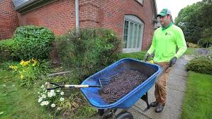 vigoro red mulch.  Mulch Is Colored Or Dyed Mulch Bad For My Plants With Vigoro Red L