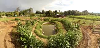Odborníci z MENDELU podporují drobné zemědělce v Etiopii - Mendelova  univerzita v Brně