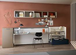Searching For A Great Modern Murphy Bed Twin