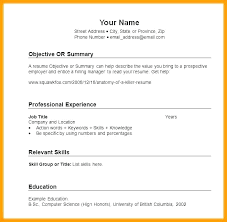 Sample Resume Format Pdf Cool Basic Resume Form Best Resume Template Whizzme