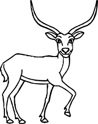 Small Picture Looking Antelope Coloring Page Wecoloringpage