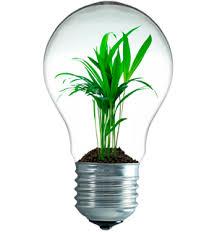 Superb High End LED Leuchten   Pflanzen Mit Modernem Licht !