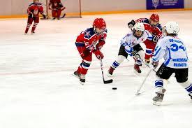 Виды спортивных игр хоккей