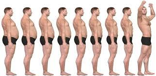 Körperfett prozent berechnen