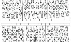 Periodontal Charting Form Best Of Dental Charting Symbols