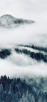Mountains, fog, trees, black and white ...