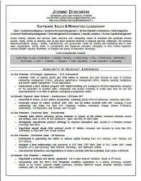 Resume Taglines Impressive MAYUR RESUME Resume Templates Downloadable Resume Taglines 60