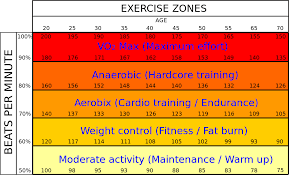 Benefits Of Heart Rate Zone Training
