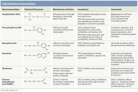 Neurotransmitter Chart Neurotransmitter Chart Google Search Nursing Study Tips
