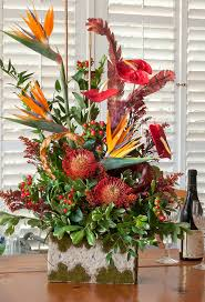 the extensive gift and fl section makes finding something special for friends and family easy wynn s carries potted plants and fresh cut