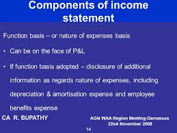 Components Of Income Statement Best Presentation Of Financial Statements Ppt Video Online Download