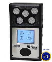 Lel Gas Conversion Chart H2s O2 Co2 Lel Gas Detector Mx6 Ibrid
