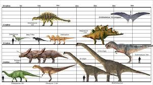 Dinosaur Sizes Comparison Chart Dinosaur Size Charts Album On Imgur