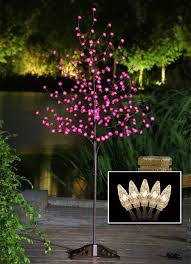 large size of decorating the outdoor garden nice holiday lights valentine surprise idea pink tree valentine
