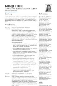 Business Development Manager Resume Samples Visualcv Resume