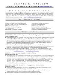 Business Owner Resume Magnificent 28 Perfect Business Owner Resume Sample Tl I28 Resume Samples