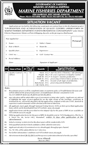marine fisheries department sindh 2017 quality control officers marine fisheries department sindh 2017 quality control officers domicile qualification experience