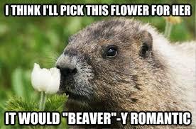 Image result for romantic meme