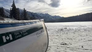 All The Fish In This Banff Lake Are To Be Removed And Killed
