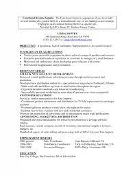 Resume Format For Career Change Combination Resume Sample for Career Change Danayaus 52