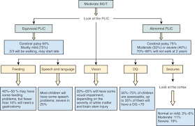 hypoxic ischemic injury in the term infant clinical neurological full size image