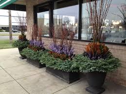 Conifer Container Garden Ideas  HGTVContainer Garden Ideas For Winter