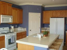 71 most extraordinary how to paint cabinets white blue painted kitchens photos light green best for kitchen colors with painting gray images behr stain hon